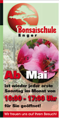 www.bonsaischule.de